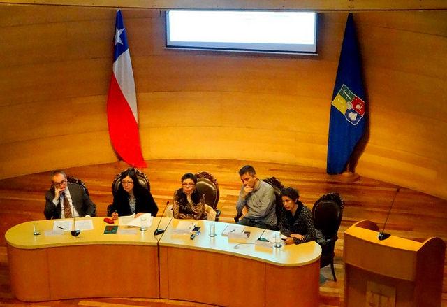 """Segunda sesión del ciclo """"Reforma Constitucional y Protección del Medio Ambiente: un debate pendiente"""" - Constanza Romero"""