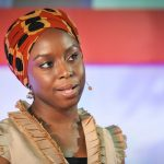 chimamanda ted talk