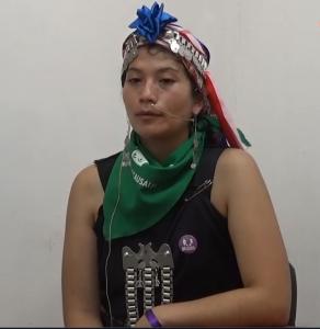 Asamblea de Mujeres de Ngulumapu, Erika Ñanco